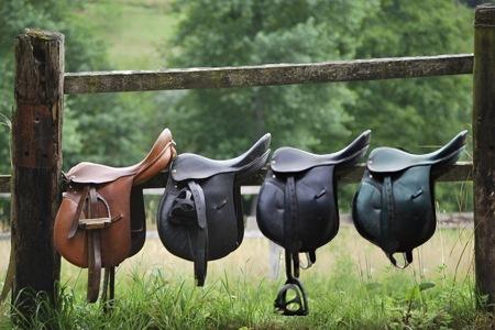 La sella: punto d'incontro tra cavallo e cavaliere