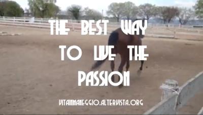 Vita in Maneggio – the best way to live the passion